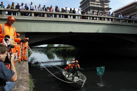 Registro do primeiro dia de limpeza do Arroio Dilúvio. Crédito: Ricardo Giusti/PMPA